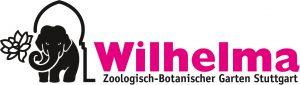 reptil-des-jahres-2017-blindschleiche-anguis-fragilis-sponsor_willhelma