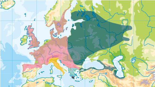 Aktuelles Verbreitungsgebiet der Blindschleiche in Europa: rot: Westliche Blindschleiche (Anguis fragilis); dunkelgrün: Östliche Blindschleiche (Anguis colchica); orange: Italienische Blindschleiche (Anguis veronensis); türkis: Griechische Blindschleiche (Anguis graeca); schwarz: Peloponnes-Blindschleiche (Anguis cephallonica)