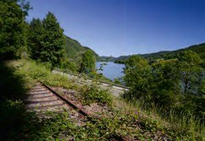 Lebensraum der Blindschleiche an der Donau bei Passau, Foto: B. Trapp